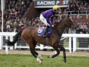 Lord Windermere ridden by Davy Russell on Ladies Day, during the Cheltenham Festival on March 13, 2013