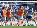 Brighton's Matt Upson scores against Blackpool on April 20, 2013