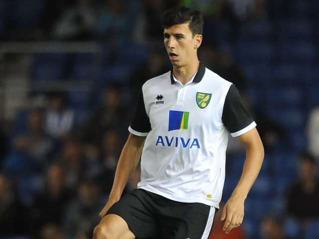 Daniel Ayala of Norwich City attacks during the pre season friendly match between Brighton & Hove Albion and Norwich City at The Amex Stadium on July 30, 2013