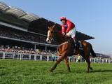 Jamie Moore and Sire de Grugy celebrate victory in the BetVictor Queen Mother Champion Chase during Ladies Day at Cheltenham Festival at Cheltenham Racecourse on March 12, 2014