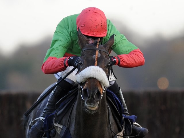 The Rainbow Hunter in action at Ascot on November 23, 2012.