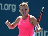 Simona Halep of Romania reacts to Danielle Rose Collins of the US during their US Open 2014 women's singles match at the USTA Billie Jean King National Center August 25, 2014