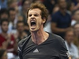 Andy Murray of Great Britain celebrates a match point against David Ferrer of Spain during the semi-final on day six of the ATP 500 World Tour Valencia Open on October 25, 2014