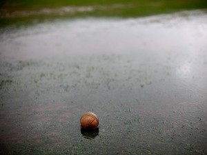 Detailed view of a cricket ball in a puddle as play is abandoned due to rain during the Natwest T20 Blast match between Worcestershire Rapids and Nottinghamshire Outlaws at New Road on June 27, 2014
