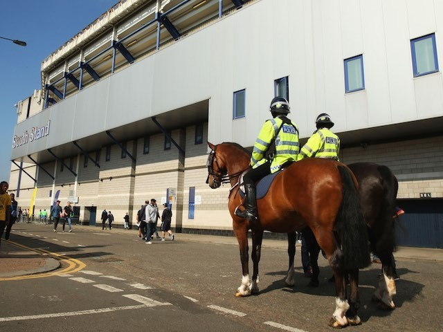 A horse waits patiently outside White Hart Lane ahead of the game between Spurs and Palace on September 20, 2015
