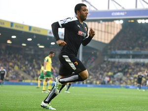 Watford captain Troy Deeney celebrates after scoring the opening goal in his side's 4-2 defeat at the hands of Norwich on May 11, 2016